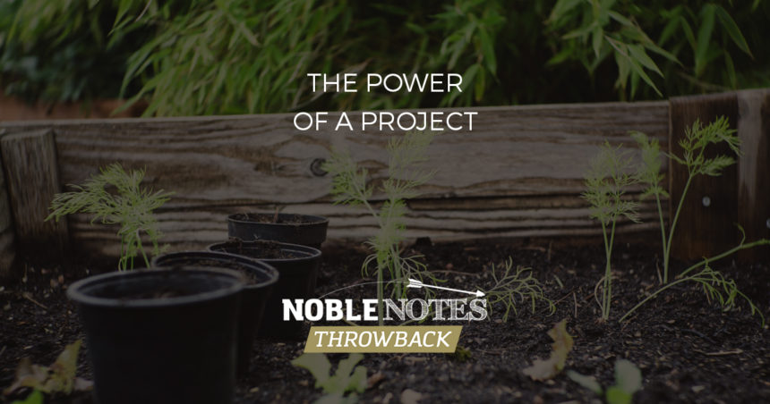 The Power of a Project