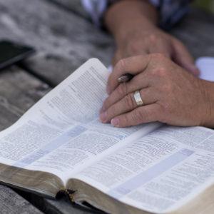 Paper Books (& Bibles) are Making a Comeback